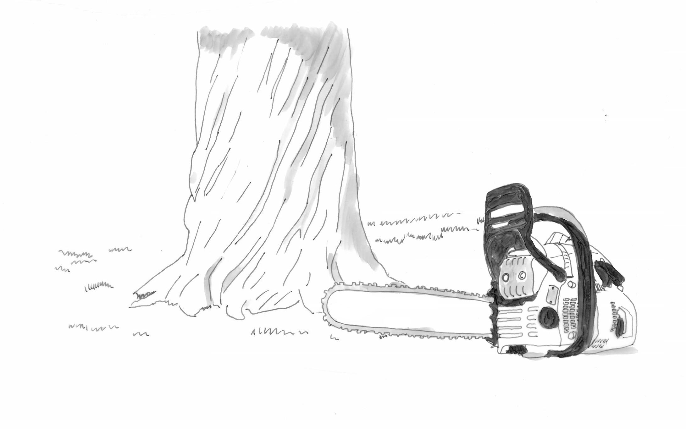 Skizze s/w eines Baumstamms und einer Motorsäge