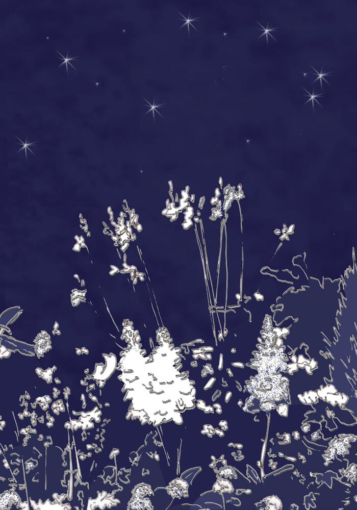 Grafik: Weiße Blüten vor Nachthimmel