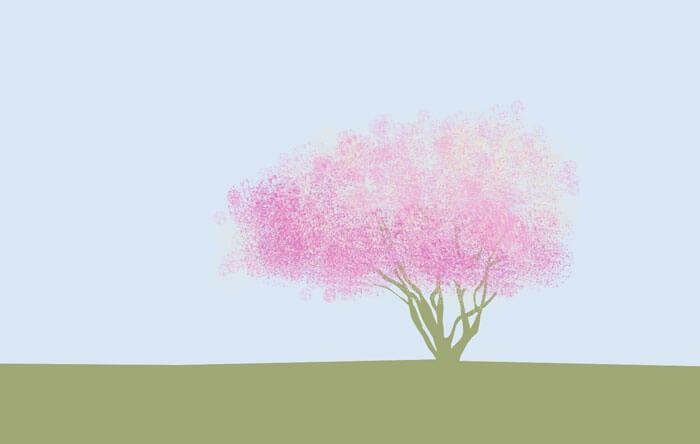 ein blühender, mehrstämmiger Baum