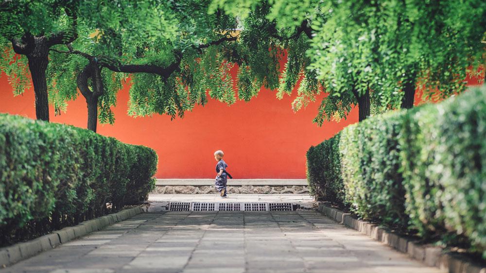 Ein Garten mit Hecken und Bäumen, im Hintergrund eine hohe Rote Mauer, ein Kind spielt davor