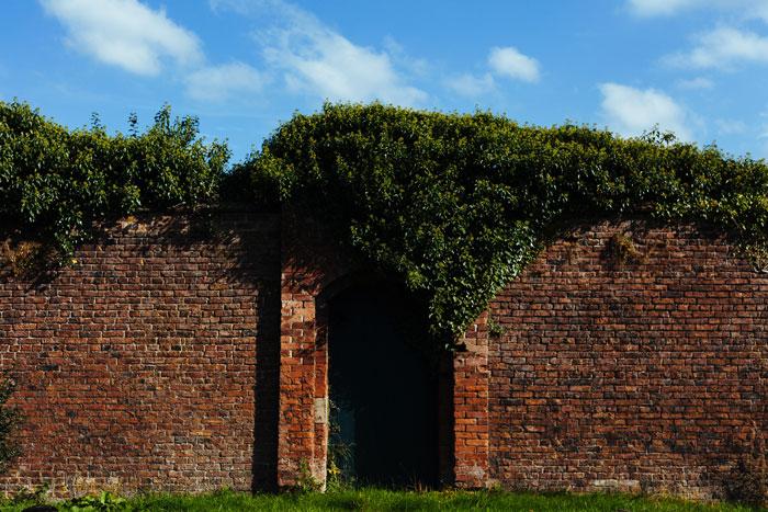 Eine geheimnisvolle Tür in einer hohen Mauer