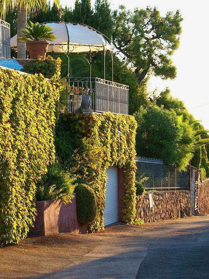 Eine schmiedeeiserner Pavillon auf dem Dach einer mit Kletterpflanzen bewachsenen Garaage