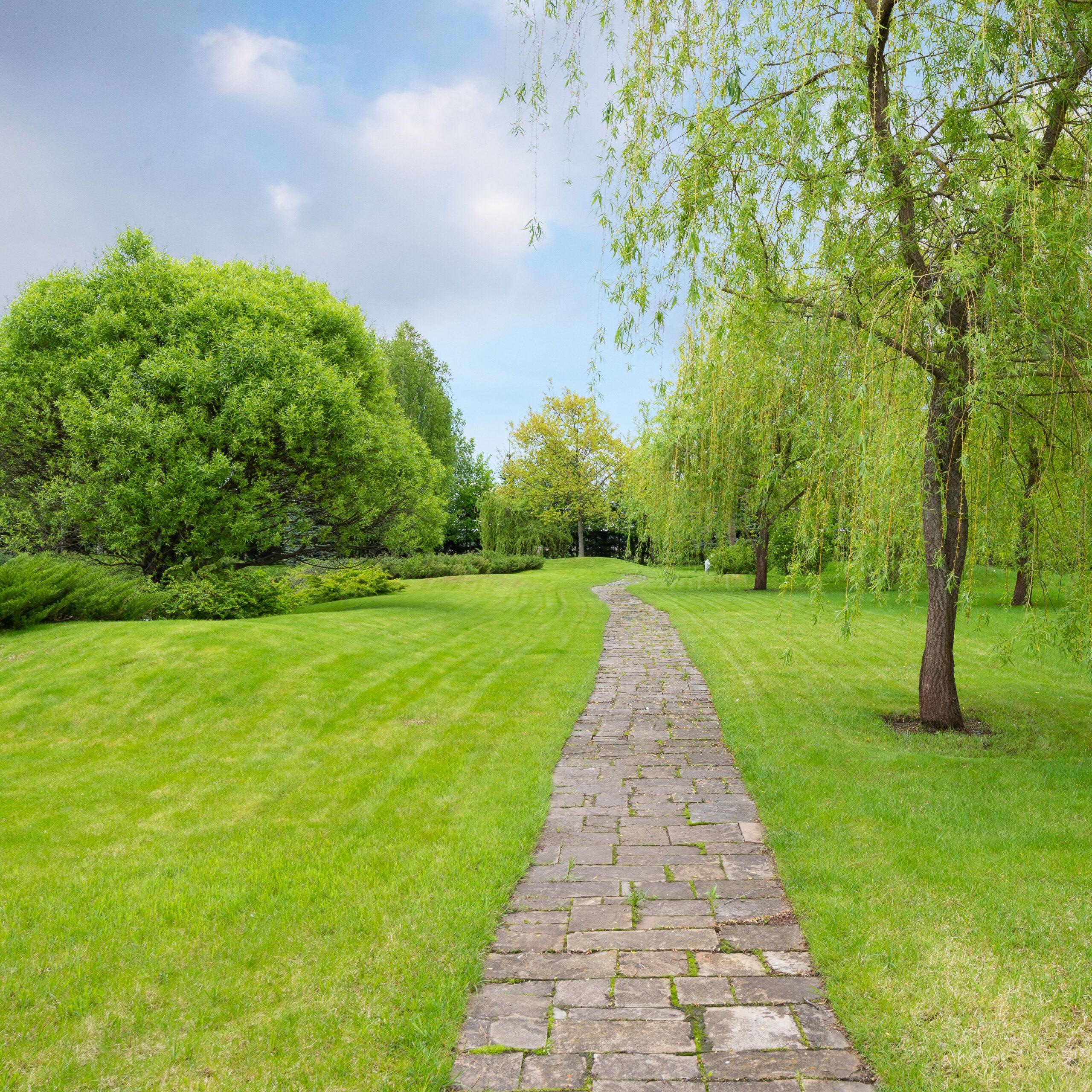 Ein mit Platten beöegten Gartenweg zwischen Rasenflächen und grünen Beeten , Bäume an den Seiten